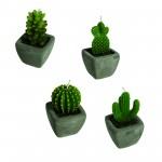 Kaktusljus