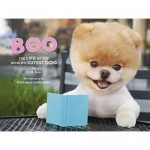 Boo - The Life of the World's Cutest Dog